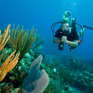 PADI - Reef conservation